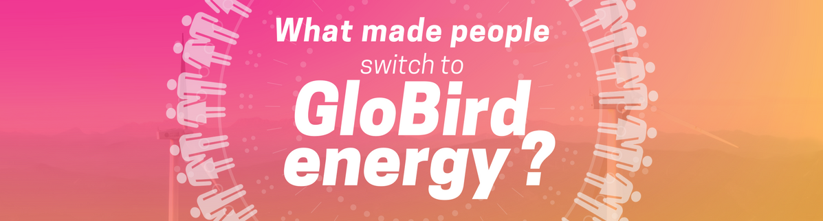 What Made People Change To Globird Energy?