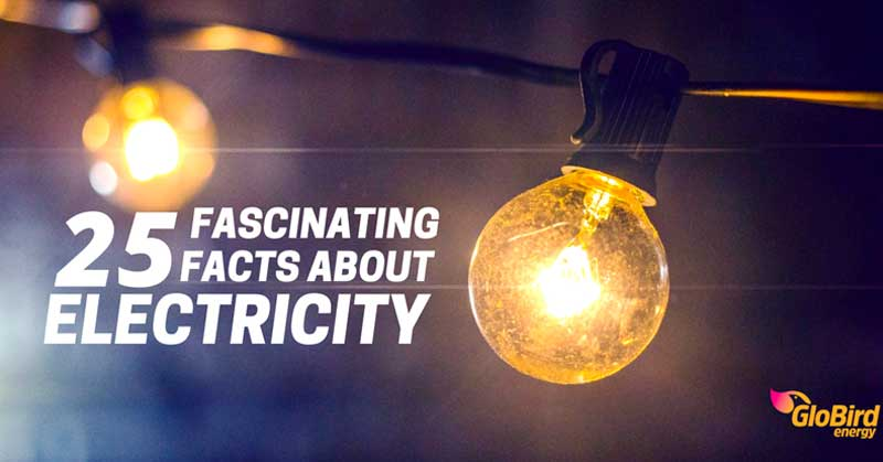 25 Interesting Facts About Light Energy Globird Energy