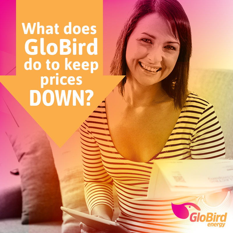 Answers to questions GloBird Energy hears a lot